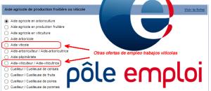 Tutorial: Cómo acceder a las ofertas de la vendimia en Francia de Pôle-Emploi