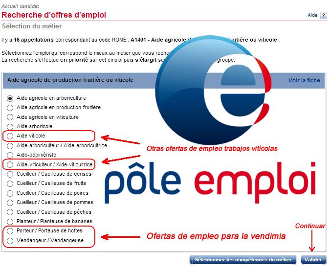 Tutorial: Cómo acceder a las ofertas para la vendimia francesa de Pôle-Emploi
