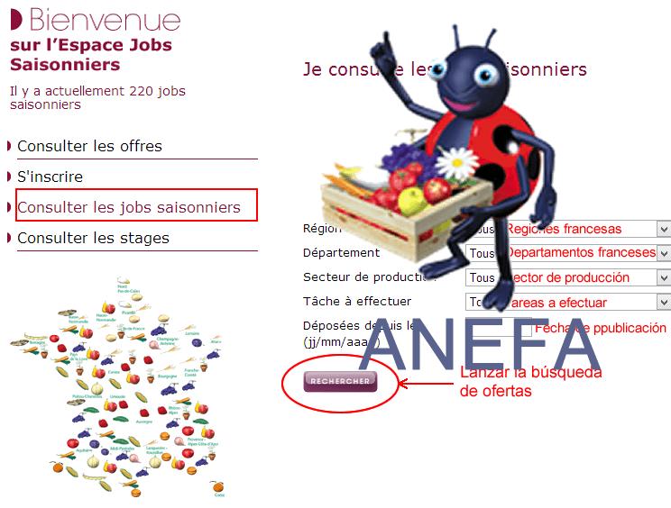 Tutorial: Cómo acceder a las ofertas para la vendimia francesa de ANEFA