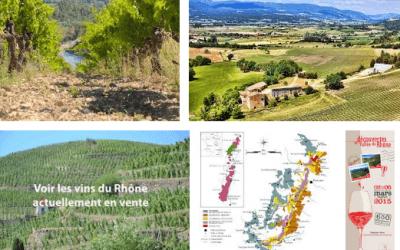 Regiones vitícolas en Francia: Del Valle del Ródano al Rosellón