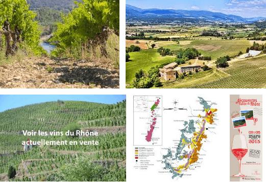 regiones vinícolas Francia - El valle del Ródano